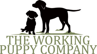 The Working Puppy Company